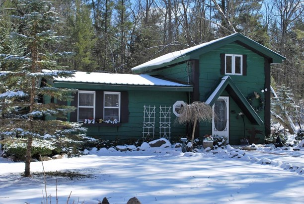 Cabin/Cottage, Single Family Residence - Baldwin, MI (photo 5)