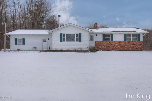 Single Family Residence, Ranch - Morley, MI (photo 1)