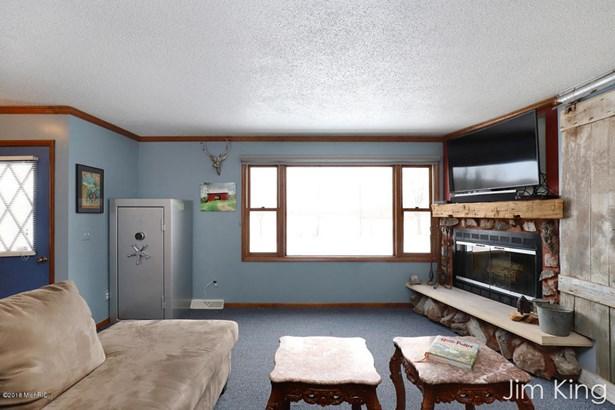 Single Family Residence, Ranch - Morley, MI (photo 5)