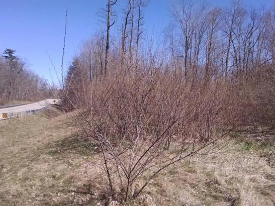 Acreage - Fennville, MI (photo 2)