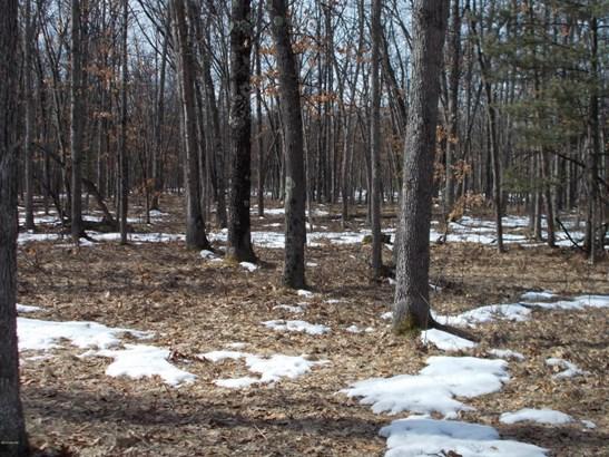 Acreage - Free Soil, MI (photo 5)