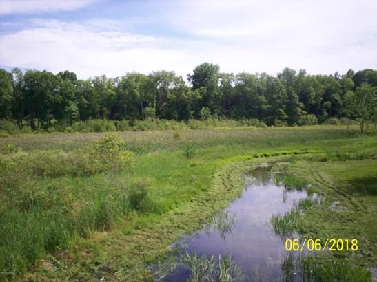 Acreage - Wayland, MI