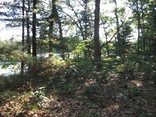 Acreage - Twin Lake, MI (photo 5)