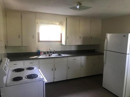 Single Family Residence, Ranch - Stanton, MI (photo 2)