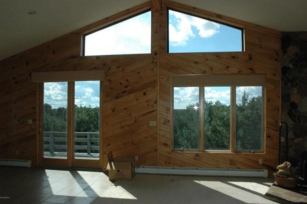Single Family Residence, Bi-Level - Big Rapids, MI (photo 4)