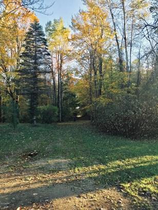 Single Family Residence, Mobile - Barryton, MI (photo 5)