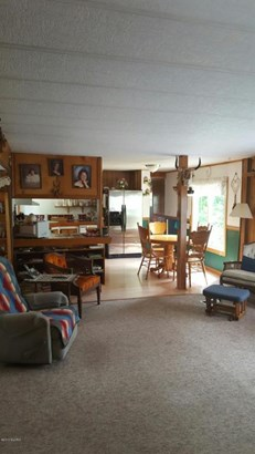 Single Family Residence, Ranch - Walkerville, MI (photo 5)