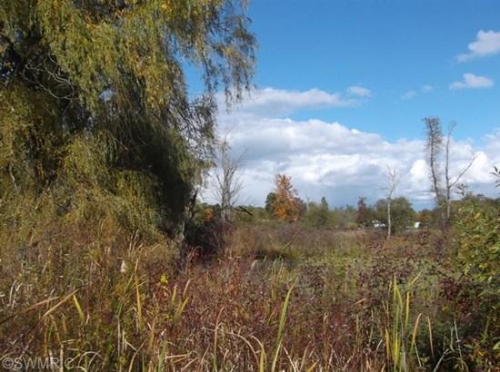 Lot - Hesperia, MI (photo 1)