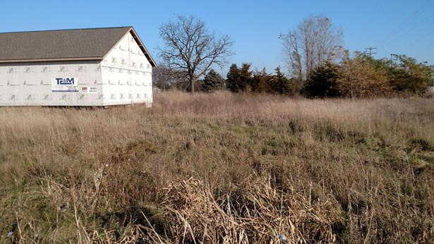 Commercial Land - Ionia, MI (photo 3)