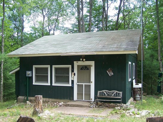 Cabin/Cottage, Single Family Residence - Rothbury, MI (photo 1)
