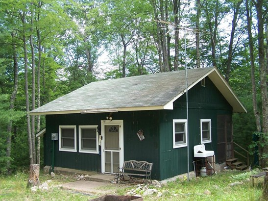 Cabin/Cottage, Single Family Residence - Rothbury, MI (photo 2)