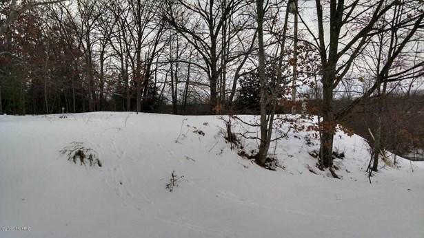 Acreage - Free Soil, MI (photo 4)