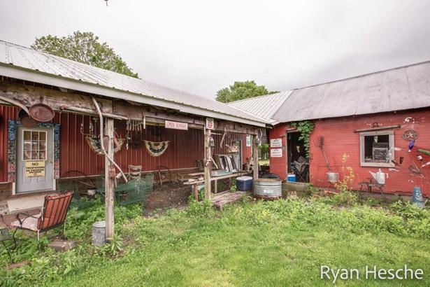 Farm House, Single Family Residence - Saranac, MI (photo 3)