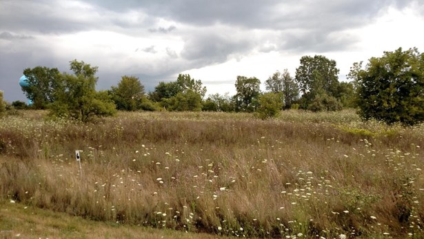 Lot - Muir, MI (photo 2)