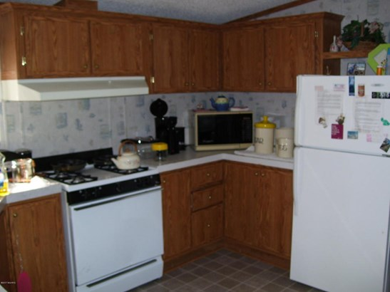 Single Family Residence, Mobile - Bitely, MI (photo 3)