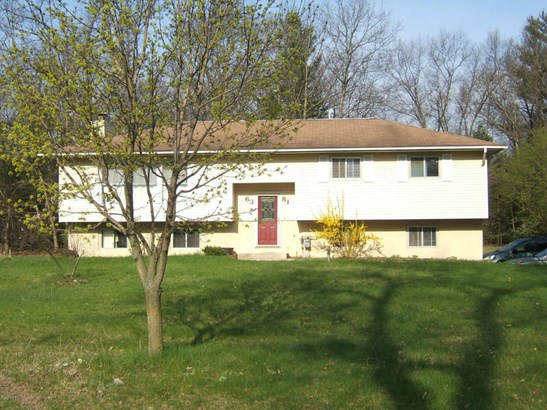 Single Family Residence, Bi-Level - Twin Lake, MI (photo 1)