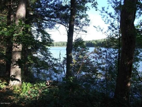 Acreage - Twin Lake, MI (photo 4)