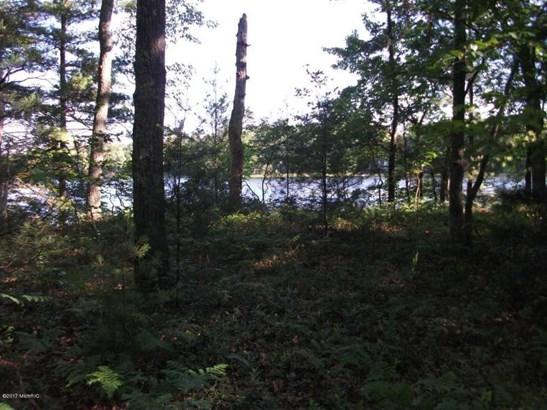 Acreage - Twin Lake, MI (photo 5)