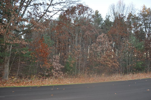 Acreage - Gowen, MI (photo 1)