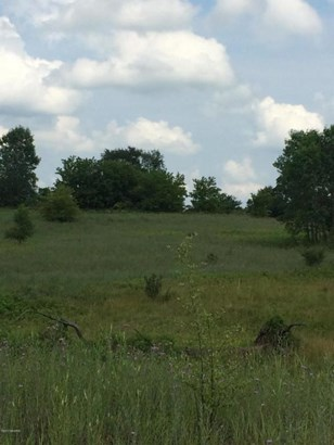 Acreage - Middleville, MI (photo 2)