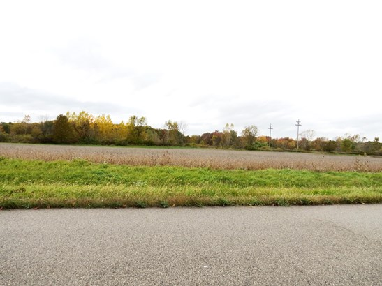 Industrial Land - Lowell, MI (photo 3)