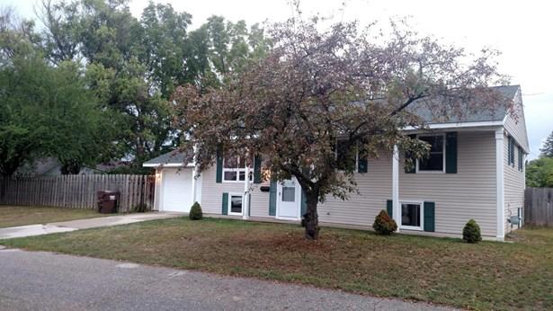 Single Family Residence, Bi-Level - Ionia, MI (photo 2)
