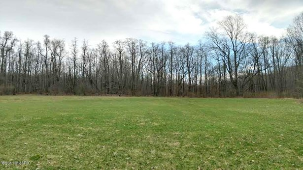Acreage - Fennville, MI (photo 3)
