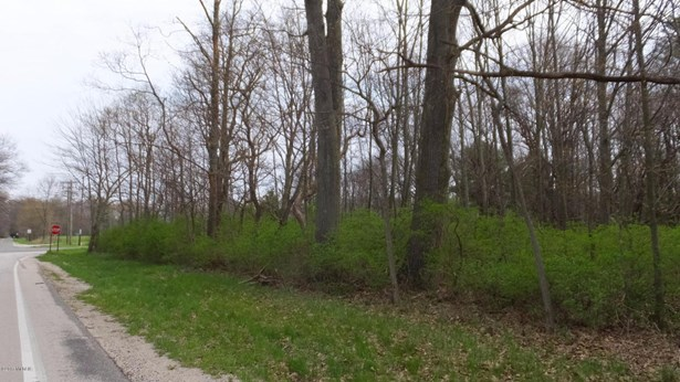 Acreage - Whitehall, MI (photo 1)
