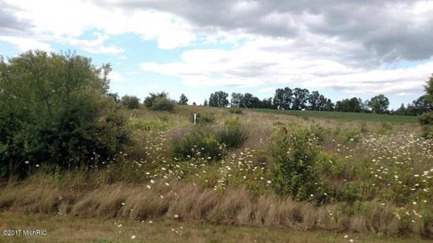Lot - Muir, MI (photo 1)