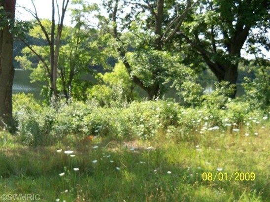 Lot - Shelbyville, MI (photo 4)