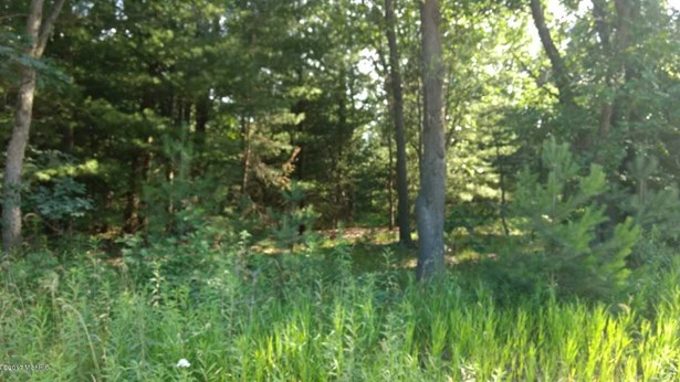 Acreage - Twin Lake, MI (photo 1)