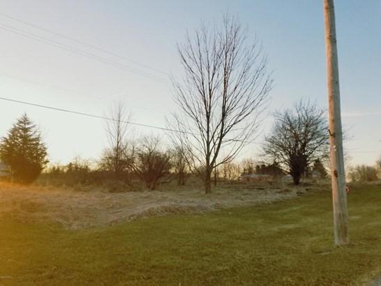 Lot - Lowell, MI (photo 2)