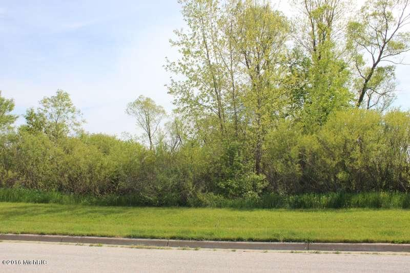 Lot - Fremont, MI (photo 1)