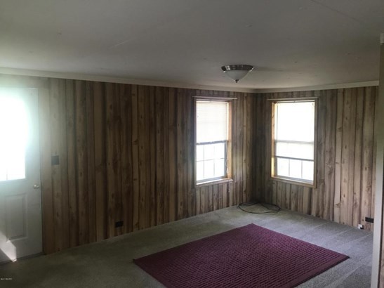Single Family Residence, Ranch - Stanton, MI (photo 4)