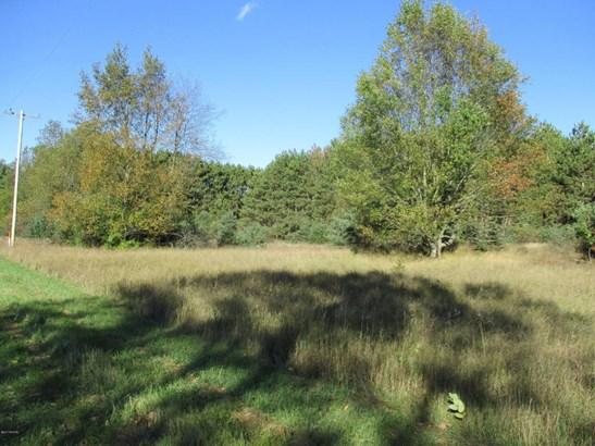 Acreage - Scottville, MI (photo 1)