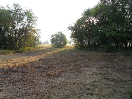 Acreage - Belding, MI (photo 1)