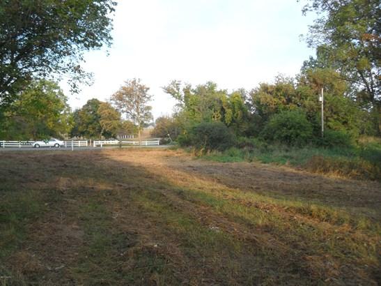 Acreage - Belding, MI (photo 2)