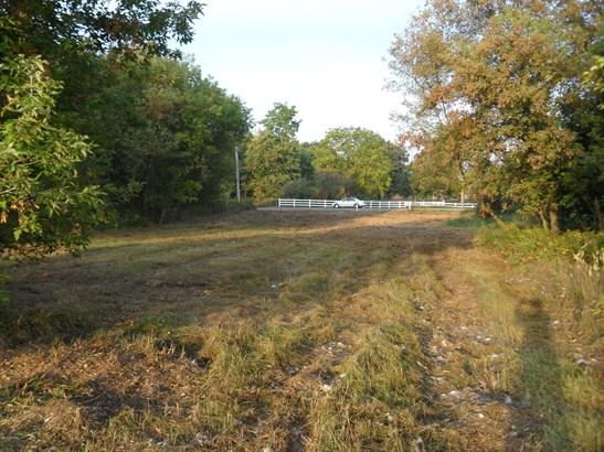 Acreage - Belding, MI (photo 3)
