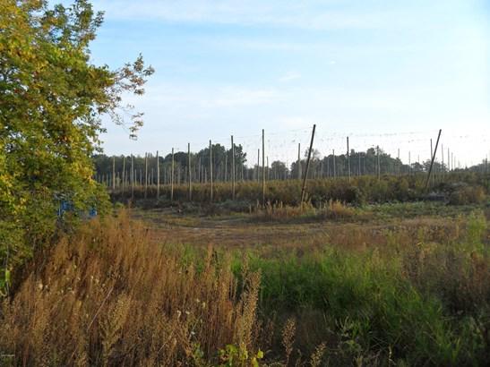 Acreage - Belding, MI (photo 4)
