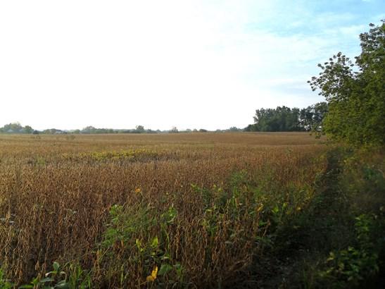 Acreage - Belding, MI (photo 5)