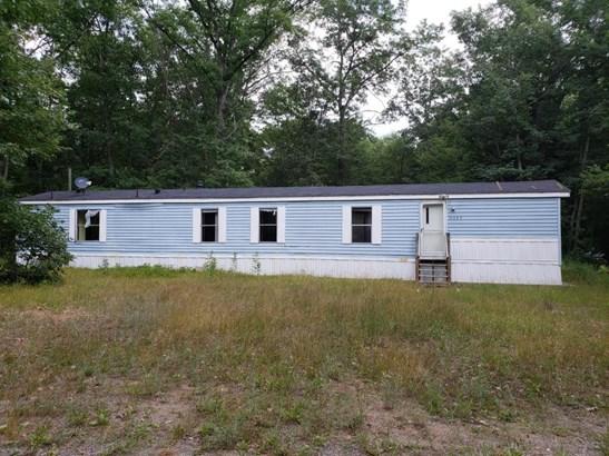 Single Family Residence, Mobile - Bitely, MI