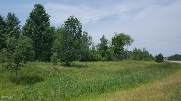 Acreage - Big Rapids, MI (photo 1)