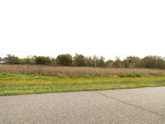 Industrial Land - Lowell, MI (photo 4)