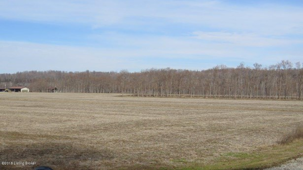 Residential Land - Brandenburg, KY (photo 2)