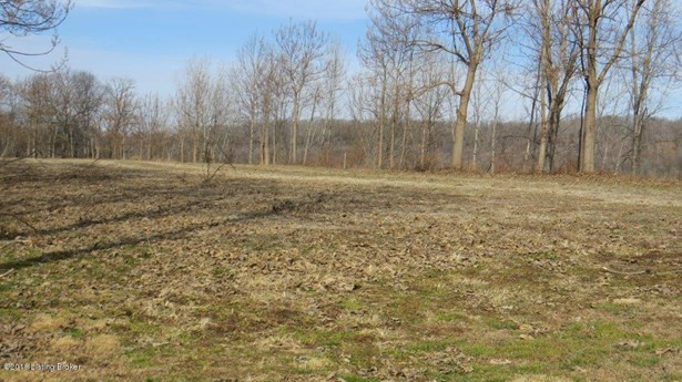 Residential Land - Brandenburg, KY (photo 3)