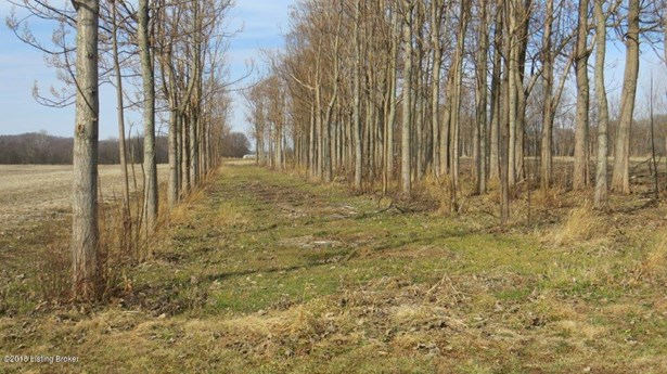 Residential Land - Brandenburg, KY (photo 4)