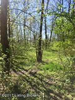 Residential Land - Pewee Valley, KY (photo 4)