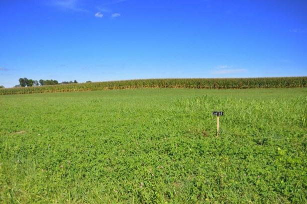 Residential Land - Milton, KY (photo 4)
