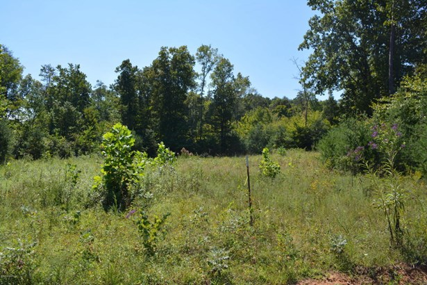 Residential Land - Bronston, KY (photo 3)