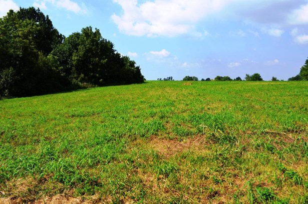 Residential Land - New Castle, KY (photo 1)